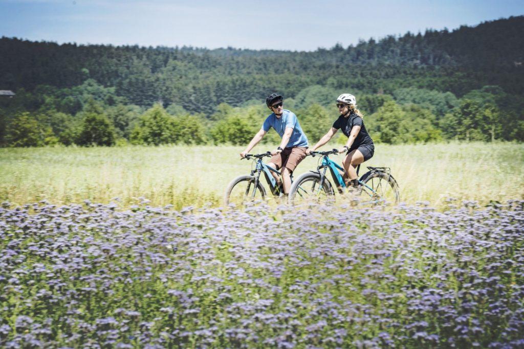 Fahrrad kaufen Flensburg